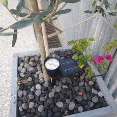 5 Best Solar Powered Garden Uplights