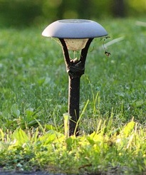 Solar Light Cleaner