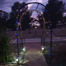 Best Solar Fairy Lights